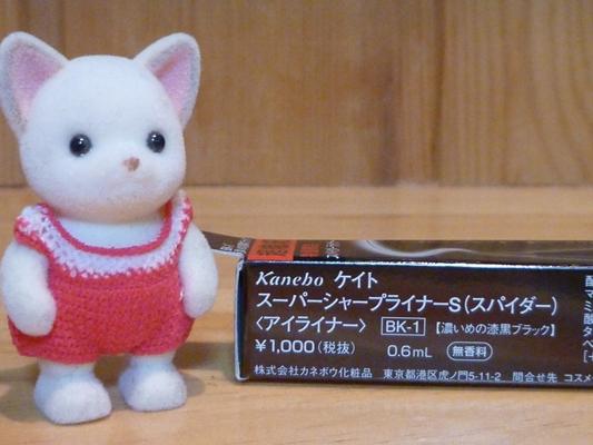 P1040680_R.JPG